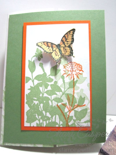 Stampin' Up! Swallowtail Stamp set